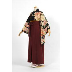kf-110 黒地に菊と桜