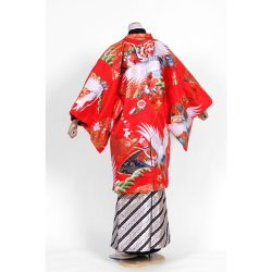男打掛紋付袴-セットNo122