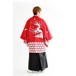 男紋付-セットNo66