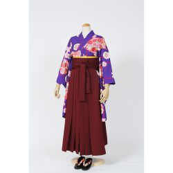 kfss-27 青紫花