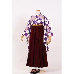 kfss-4 紫市松