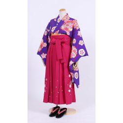 kfsss-2 紫菊花